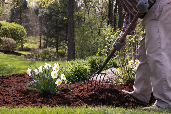 Landscaping cleaning and maintenance is a challenging task. It is very important especially during the Spring season.